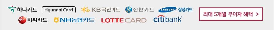 하나카드 현대카드 국민카드 신한카드 삼성카드 비씨키드 농협카드 롯데카드 씨티뱅크 최대 5개월 무이자 혜택
